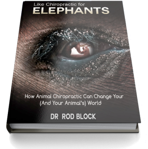 Dr. Block Book Cover